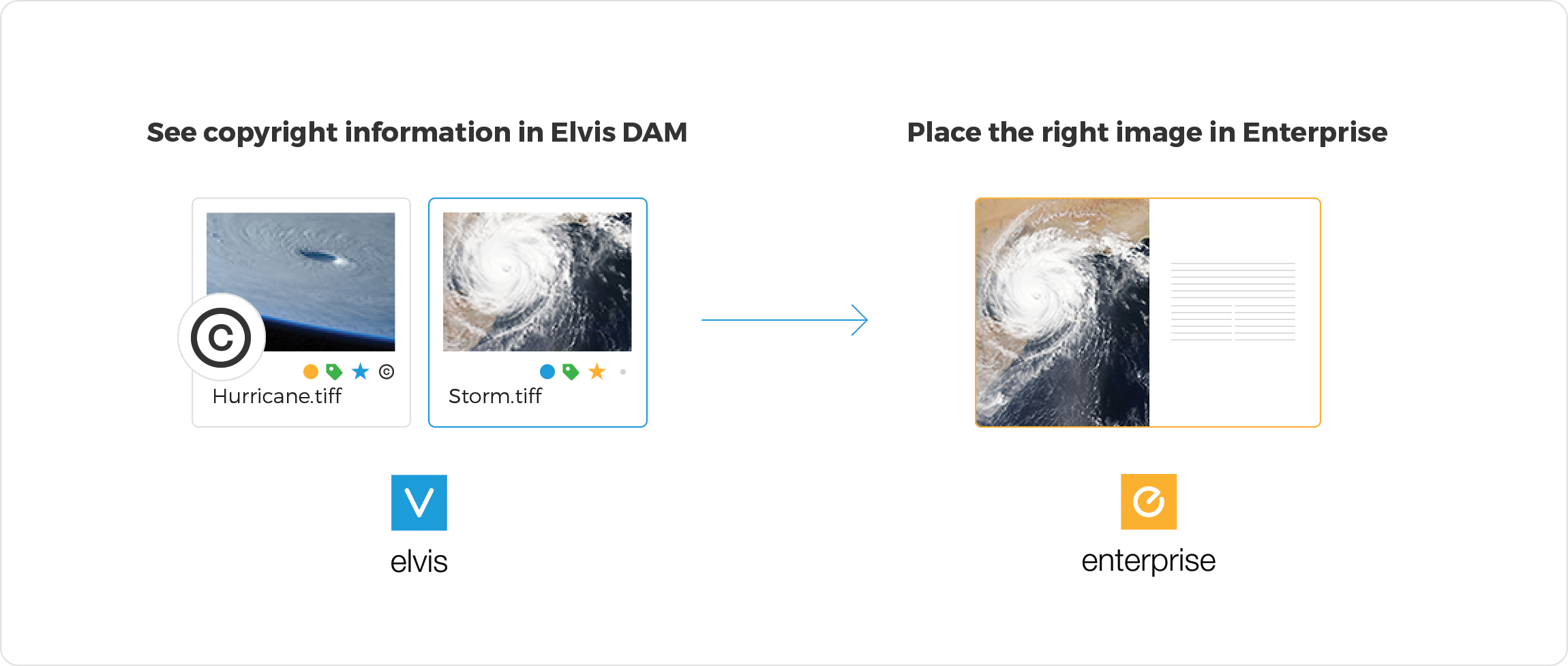 elvis-dam-enterprise-integration-prevent-copyright-problems-2x.png