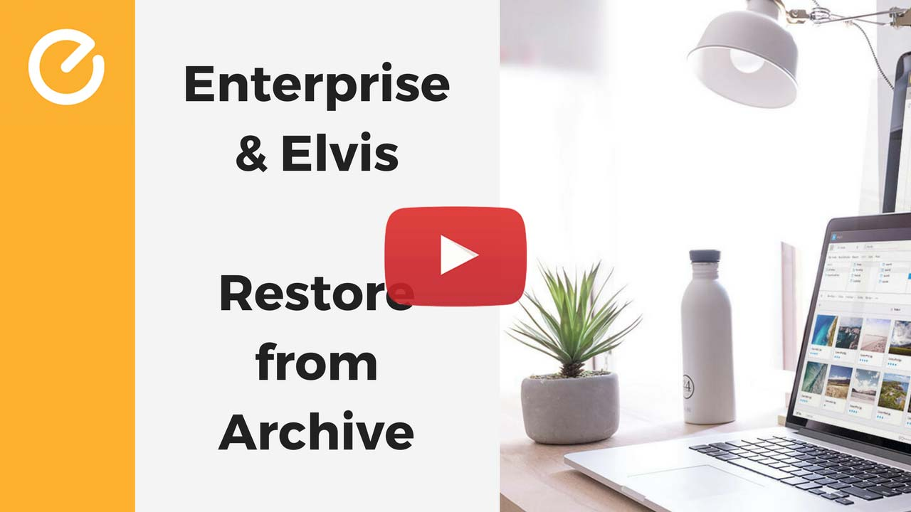 elvis-dam-enterprise-integration-restore-from-archive.jpg