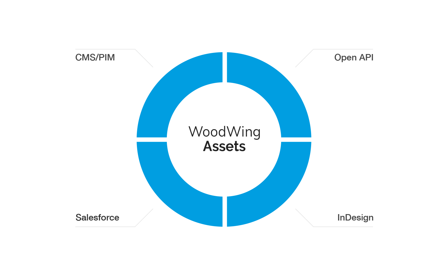 woodwing_assets-publish.png